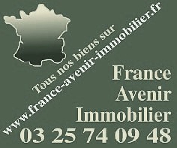 France avenir immobilier troyes agence immobili re troyes for Agence immo troyes